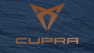 logo_copper_texture