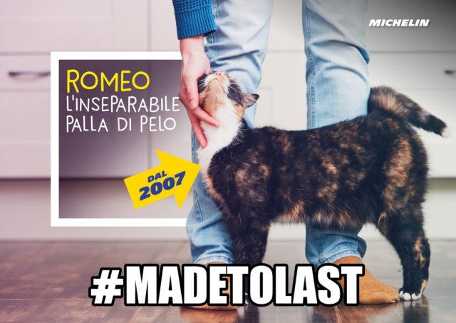 -madetolast-visual-10
