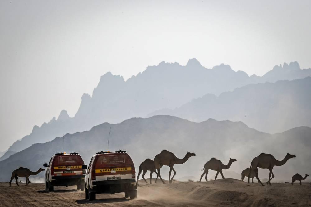 La Dakar 2020 va in Arabia Saudita dove le donne guidano da un anno e diventa il baluardo del gender gap.